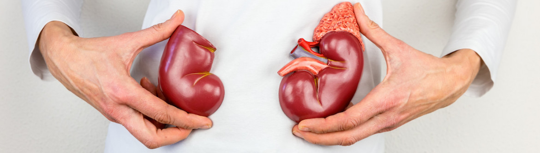 Kidney Disease | Island Health