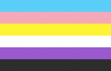trans non binary flag